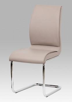 Jídelní židle DCH-575
